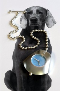 Watch Dogs Series: Weimaraner Pocket Watch